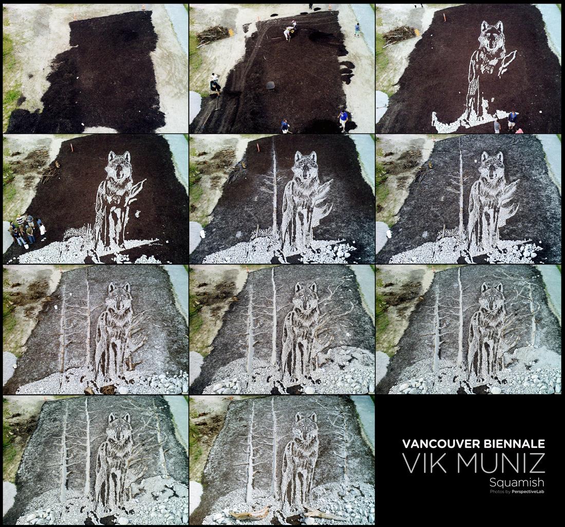 VikMunizByPerspectiveLabweb
