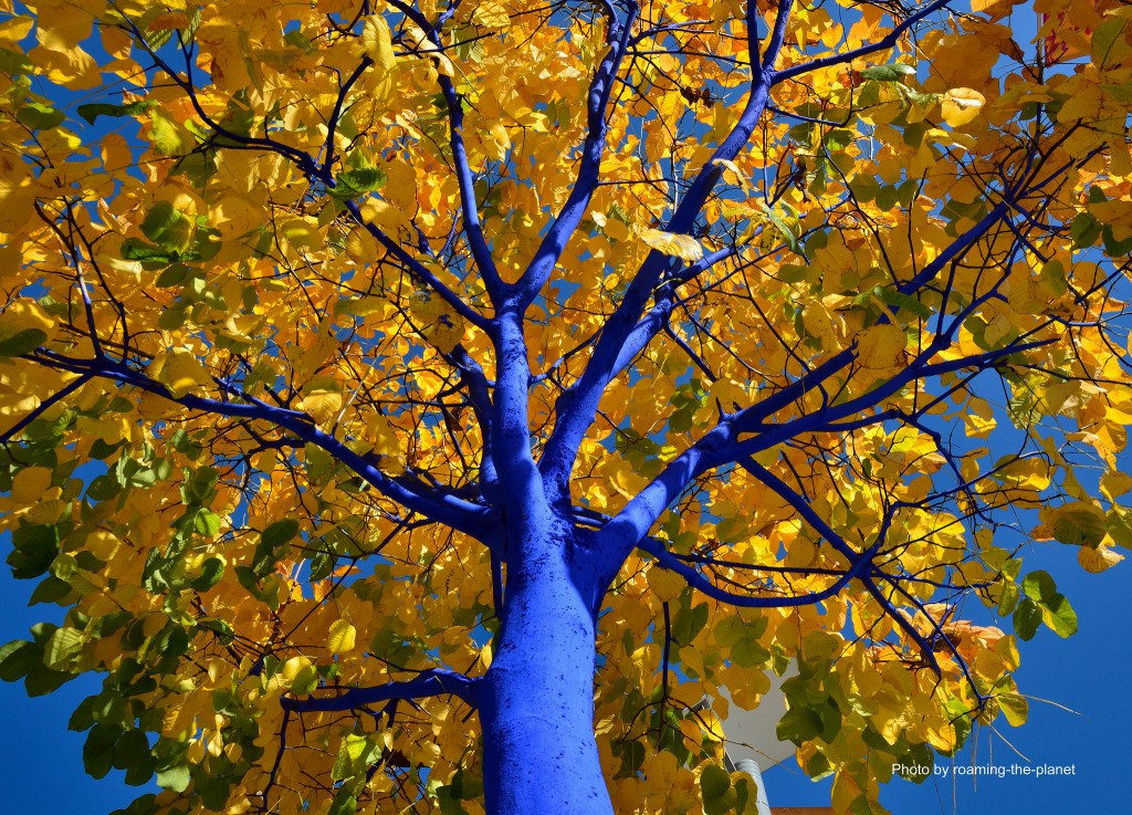 Blue Trees New West