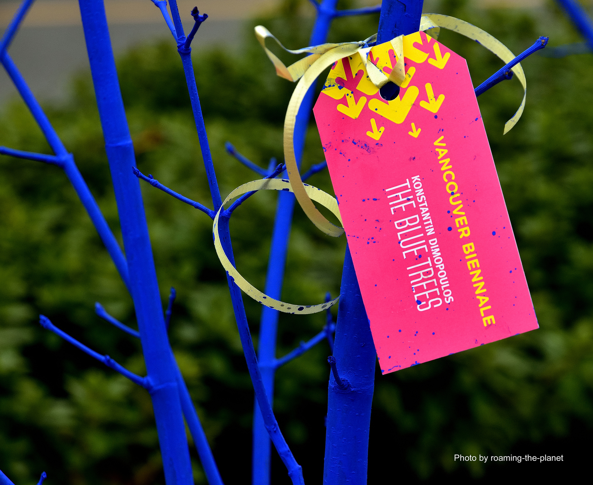 Blue Trees Tags